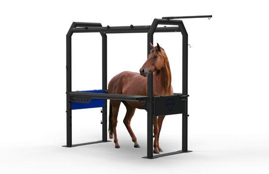 Inovaus | Equine | Horse Crush-10