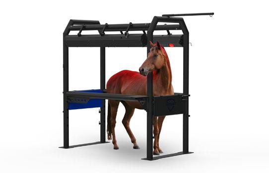 Inovaus | Equine | Horse Crush-11